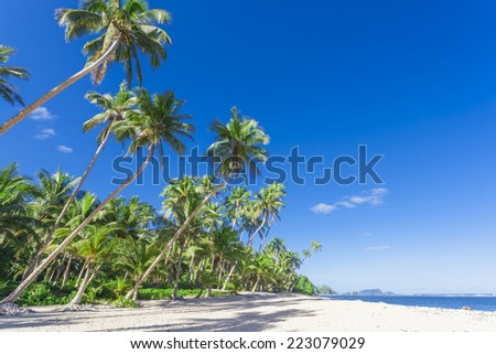 Tropical Samoa with white sandy beaches and coconut palms - stock photo