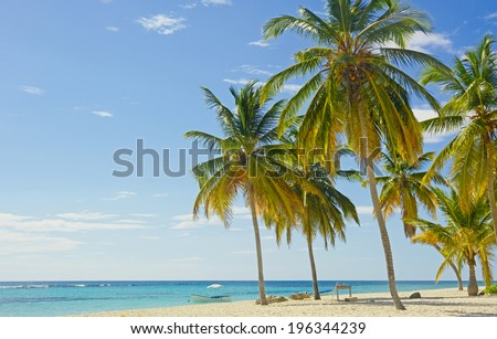 Tropical sand beach - stock photo