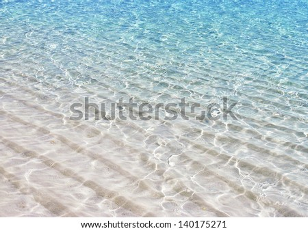 tropical sandy beach - stock photo