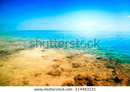 Tropical sandy beach Maldives at summer sunny day - stock photo