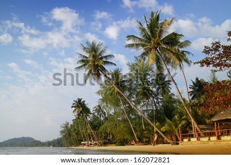 Tropical sandy beach with palm trees. Koh Chang, Thailand