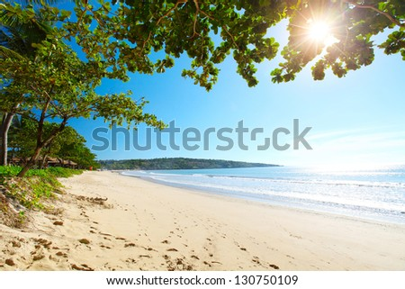 Tropical sandy beach with trees at sunny day. South of Bali, Jimbaran beach - stock photo