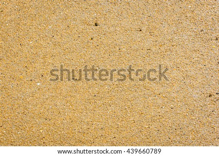 Tropical sandy beach. Yellow sand texture. - stock photo