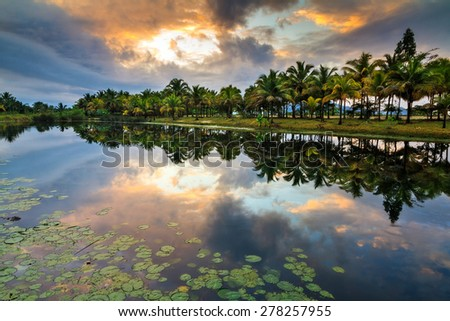 Tropical scene at sunrise with palm trees reflected in the water in Maraontsetra, Madagascar - stock photo