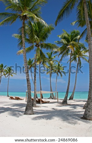 Tropical Scene On The Beach Of Caribbean Sea