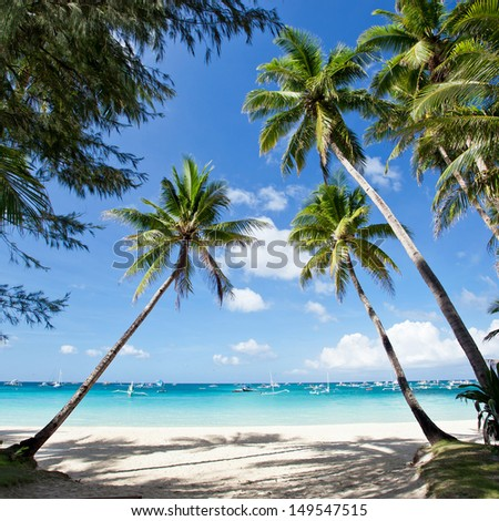 Tropical scene, Philippines, Boracay - stock photo