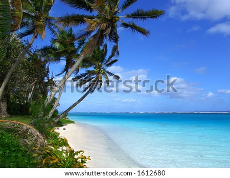 Tropical Scenic - stock photo