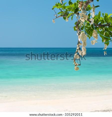 tropical sea and corals. Sea vacation - stock photo