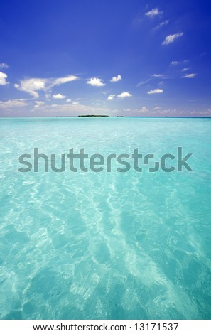 Tropical sea, Maldives - stock photo