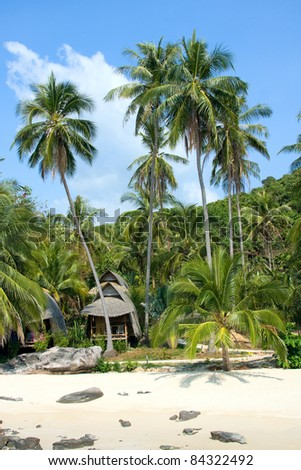 Tropical seashore with palm trees under blue sky. - stock photo