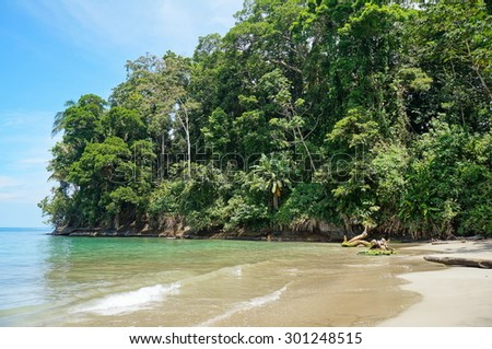 Tropical shore with lush vegetation on Punta Uva beach, Caribbean, Puerto Viejo, Costa Rica - stock photo