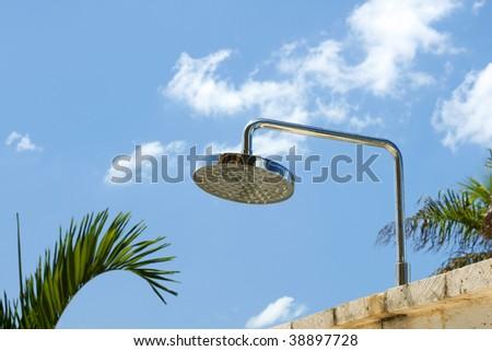 Tropical Shower Head - stock photo