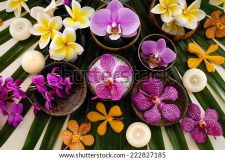 tropical spa  - stock photo