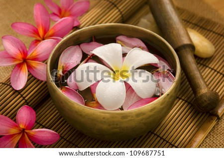 Tropical spa with Frangipani flowers on water. Low lighting, suitable for spa related theme. - stock photo