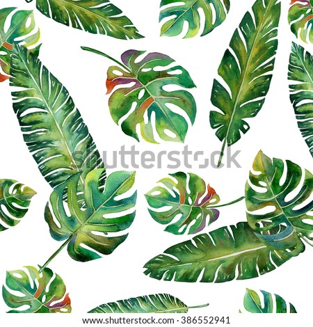 tropical Split leaves palm with banana leaves plant botany tropical forest watercolor print spring summer hawaii painting pattern on white background illustration - stock photo