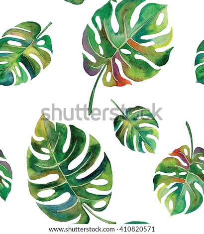 tropical Split  leaves plant tropical exotic leaves watercolor pattern seamless spring summer hawaii , design print ,textile backdrop,wallpaper isolated on white background  - stock photo