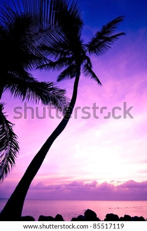 Tropical Sunrise. Beautiful Sunrise at Florida Keys, USA. Vertical Photo