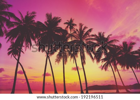 Tropical sunset over sea with palm trees, Thailand. Retro vintage filtered.
