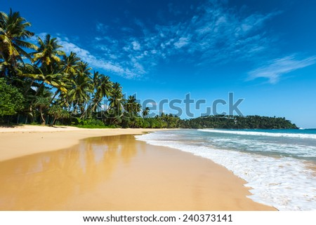 Tropical vacation holiday background - paradise idyllic beach. Sri Lanka - stock photo