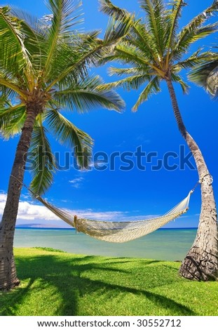 Tropical Vacation, Palm Trees and Hammock - stock photo
