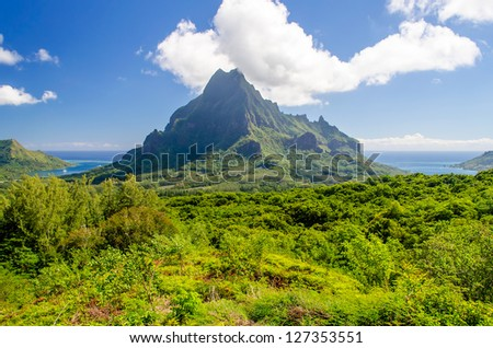 Tropical Vegetation against a Blue Sky, Island of Moorea, French Polynesia - stock photo