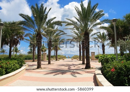 Tropical walkway to south beach - stock photo