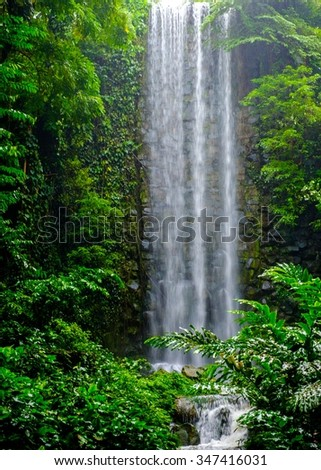Tropical waterfall in a jungle