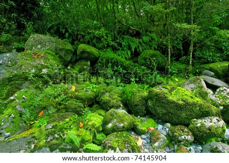 tropical waterfall in glacier country - stock photo