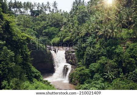 Tropical waterfall in rain forest - stock photo