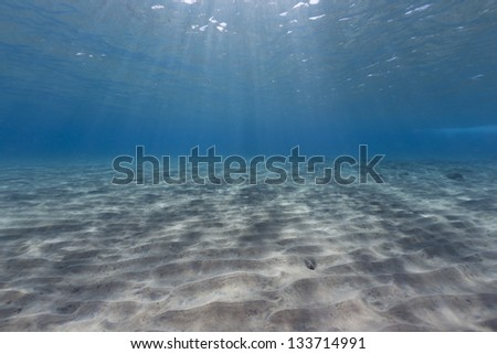 Tropical waters of the Red Sea - stock photo