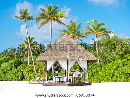 tropical wedding ceremony location. beautiful blue sky and palm trees