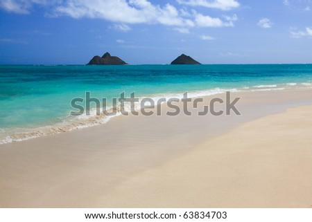 Tropical white sand beach - stock photo