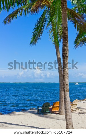 tropical white sand beach with palm trees and beach chairs - stock photo
