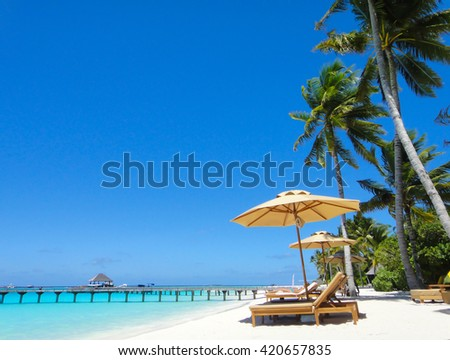 Tropical white sand beach with palm trees in maldives - stock photo