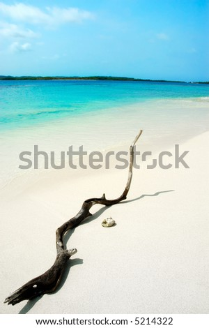 Tropical white sand beach with turquoise waters