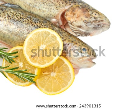 Trout fish with lemon isolated on white background on white background.