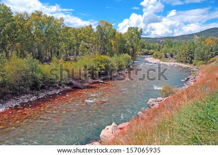 Trout Fishing Stream  - stock photo