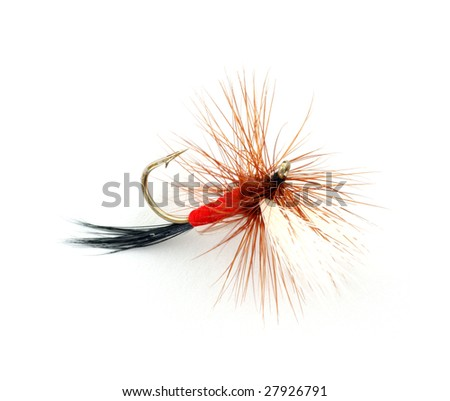 Trout fly - stock photo
