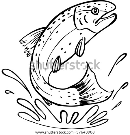 Trout line art stock illustration 37643908 shutterstock trout line art freerunsca Images