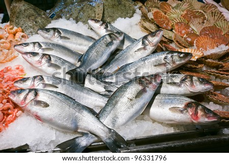 Trouts for sale at the Rialto fish market - Venice, Venezia, Italy, Europe - stock photo