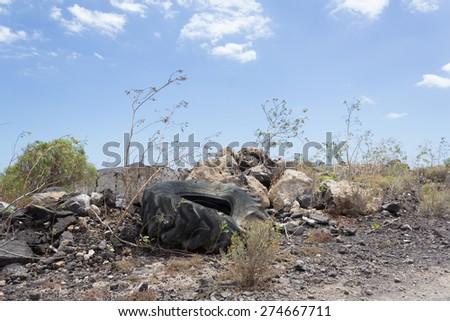 Truck car tire in landscape - stock photo