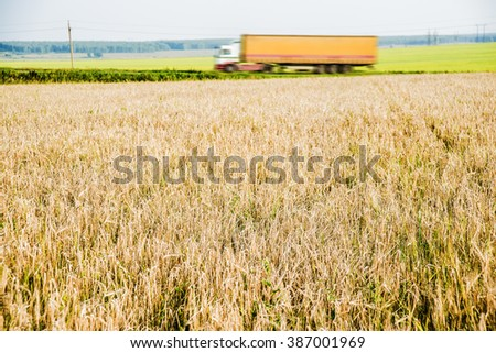 Truck driving on a rural road. View from the side of the road. Wheat field - stock photo