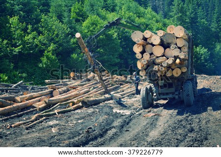 Truck loading wood in the forest. East Carpathian mountains. - stock photo