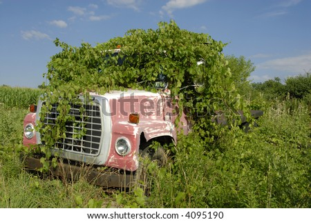Truck overgrown with weeds - stock photo