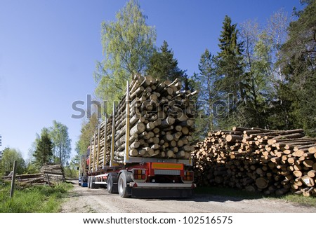 Truck with timber in the forest - stock photo