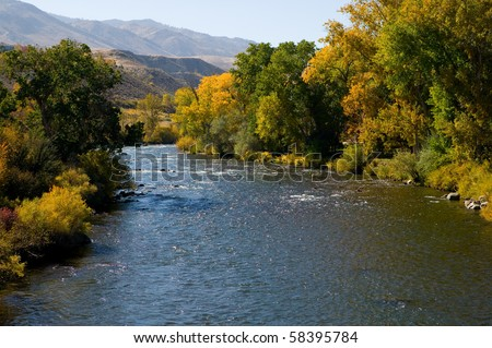 Truckee River outside of Reno, Nevada showing fall colors of Cottonwoods and other deciduous trees - stock photo