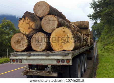Trucking timber from the Amazon over the Andes in Ecuador - stock photo