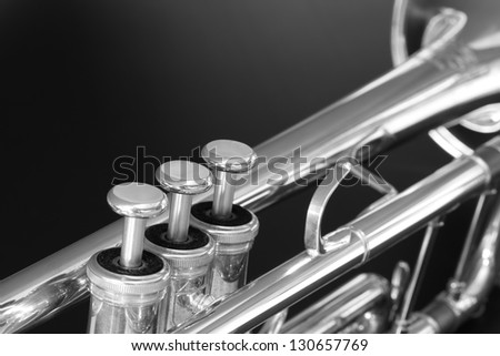 Trumpet in black and white.