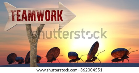 trunk and wooden sign indicating to teamwork - stock photo