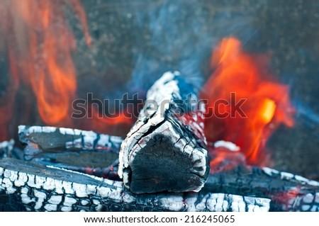 Trunks in bonfire closeup. - stock photo
